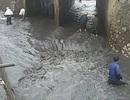 """Quảng Ninh tiếp tục mưa, người dân giỡn mạng sống dưới """"suối than"""""""