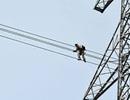 Trèo lên mái nhà, 1 người bị hút ngược lên dây điện cao thế
