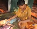 Rớt nước mắt trước cảnh 2 con tàn tật mong có tiền cứu bố bị bệnh hiểm nghèo