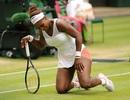 Serena Williams bị loại trước ngưỡng cửa tứ kết