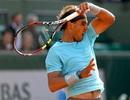 Nadal thắng dễ, Wawrinka sớm thành khán giả