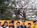 """""""Choáng váng"""" trước cảnh xem bóng đá của CĐV xứ Nghệ"""