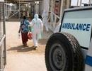 Ca bệnh Ebola đầu tiên được chẩn đoán trên đất Anh