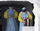 Đã có hơn 7.700 người chết do Ebola