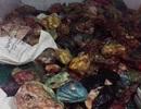 Phát hiện 14,6 tấn sản phẩm động vật không nguồn gốc