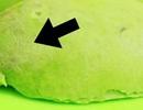 Giữ tối đa giá trị dinh dưỡng từ trái bơ