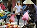 Đựng đồ ăn bằng túi nilon: Cẩn thận kẻo ung thư