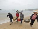Phó Thủ tướng yêu cầu đẩy nhanh bồi thường ô nhiễm môi trường biển