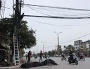 """Hà Nội: Dọn """"rác trời"""" trên nhiều tuyến phố"""