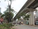 Chặt hạ những cây cổ thụ cuối cùng trên đường Nguyễn Trãi