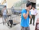 Cứu hộ thành công 1 cá thể gấu chó tại Điện Biên