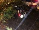 Hà Nội: Kịp nhảy khỏi xe trước khi cành cây lớn đổ sập trước mặt