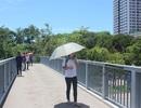 Nắng nóng 38 độ C trải rộng khắp miền Bắc, Trung
