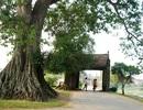 Du ngoạn city tour Hà Nội, nên đi những đâu?