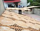 Bắc Giang: Hương quê giòn tan trong miếng bánh đa Dĩnh Kế