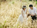 Chiều thu Hà Nội và ký ức bông cỏ lau