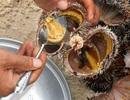 Lạ miệng với thịt nhím biển đất Phú Yên