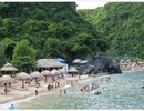 Du lịch biển giá rẻ hút khách