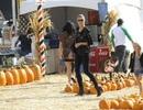 Heidi Klum đưa các con đi chơi Halloween