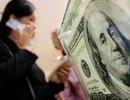 Nợ nước ngoài tự vay tự trả: Chính phủ không chịu trách nhiệm