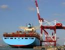 Kim ngạch xuất khẩu năm 2013 ước đạt 132 tỷ USD