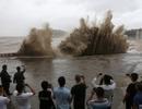 Bất chấp nguy hiểm, du khách thi nhau chụp hình siêu bão