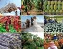 Ba nhóm giải pháp thúc đẩy ngành nông nghiệp 6 tháng cuối năm