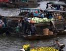 Cần Thơ: Phát triển du lịch gắn với ẩm thực