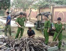 Tổ chức tiêu hủy các loại vũ khí và công vụ hỗ trợ