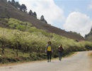 Quy hoạch phát triển Mộc Châu thành Khu du lịch Quốc gia