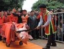 """Lãnh đạo tỉnh Bắc Ninh lên tiếng về tục """"chém lợn"""""""