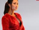 Thời trang Alcado giảm 70% chào Tết & Valentine