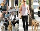"""Những """"hot boy"""" Hollywood yêu chiều cún cưng hết mực"""