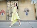 Linh Nga nổi bật trên đường phố Mỹ