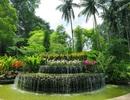 Vườn Bách thảo Singapore được Unesco vinh danh di sản thế giới