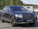 Bentley Bentayga tái xuất trên đường thử