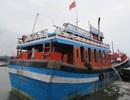 Đá san hô đè chết ngư dân dưới đáy biển Trường Sa