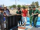 Xác minh việc ngư dân tố bị 4 tàu Trung Quốc tấn công, cướp tài sản