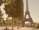 Paris – thành phố nỗi cô đơn lang thang