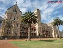 Du học Học viện ICMS - Sydney nhận lương thực tập 30.000 AUD
