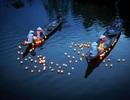 """Những cô gái Việt Nam châm đèn """"thắp sáng thế giới"""""""