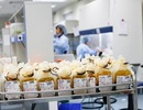 Lần đầu tiên đảm bảo 100% nhu cầu máu điều trị dịp Tết