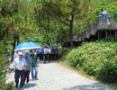 Đầu tư xây công trình phụ trợ tại khu mộ Đại tướng Võ Nguyên Giáp
