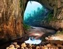 """Quảng Bình: """"Bảo tồn và phát huy tối đa giá trị của rừng di sản"""""""