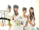 Đà Nẵng: Hơn 400 bạn trẻ được tư vấn trước mùa cưới