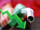 """Dầu xuống 40 USD/thùng, nguy cơ """"bốc hơi"""" 1% tăng trưởng GDP!"""