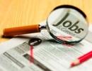 """TPHCM """"trống"""" 23.000 chỗ làm việc trong tháng 3"""
