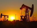 GDP quý I cao bất ngờ: Công lớn nhờ khai thác mạnh dầu thô?
