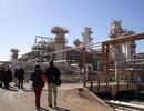 Việt Nam sang Algeria khai thác dầu