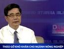 """Bộ trưởng Phát: """"Việt Nam có thể trồng cây macca ở nhiều vùng..."""""""
